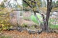 Regional Parks Botanic Garden - Berkeley, CA - DSC04305.JPG