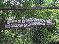 ReservaDaSapiranga-Brazil.JPG