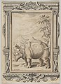 Rhinoceros in a Landscape within an Ornamental Frame MET DP835389.jpg