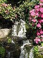 Rhody Garden Spring2.JPG