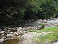 Rio Macacu.JPG