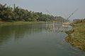 River Churni - Halalpur Krishnapur - Nadia 2016-01-17 8746.JPG