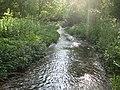 River Misbourne near Shardeloes - geograph.org.uk - 1895757.jpg