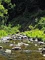 Rivière Chassé à Sainte-Marie.jpg