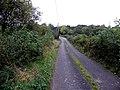 Road at Corrachomera townland, Corlough parish, County Cavan, Republic of Ireland. Heading north-west.jpg