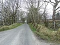 Road at Drumoghill - geograph.org.uk - 1805829.jpg