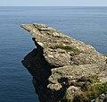 Rock on Prawle Point - geograph.org.uk - 845304.jpg