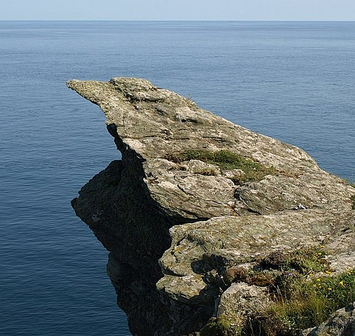 Rock on Prawle Point - geograph.org.uk - 845304