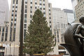 Rockefeller Center Christmas Tree 2013.jpg