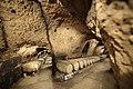 Roman-grotto-Chateau-Ksara-winery-beqaa-wine-Lebanon.jpg