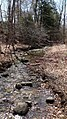 Rouge River wetlands (8628926008).jpg