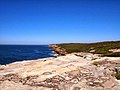 Royal National Park Coast Track - panoramio (3).jpg