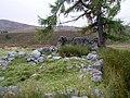 Ruin of Shleanaferan - geograph.org.uk - 991518.jpg