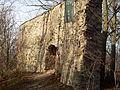Ruine Altengleichen 2011.jpg
