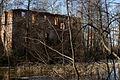 Ruiny pałacu myśliwskiego – Grodziszcze (zetem) 5.jpg
