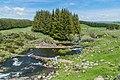 Ruisseau des Pleches 03.jpg