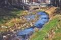 Rzeka Kwisa w Mirsku.JPG