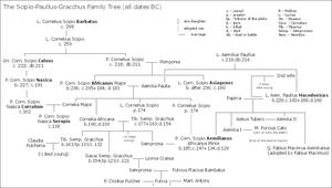 Scipio–Paullus–Gracchus family tree - Image: SAG famtree