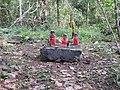 Saasthan-3-kallar-meenmudii-kerala-India.jpg