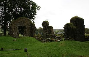 Ragnall mac Somairle - Ruinous Saddell Abbey, founded by either Ragnall or his father.