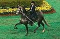 Saddlebred Horse (2788619858).jpg