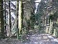 Saint John's Castlerigg and Wythburn CA12, UK - panoramio.jpg