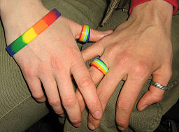 https://upload.wikimedia.org/wikipedia/commons/thumb/8/81/Same_Sex_Marriage-02.jpg/256px-Same_Sex_Marriage-02.jpg