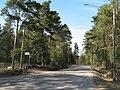 Samppavägen vid Kuolemannokkavägen 2011.jpg