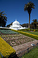 San Francisco Conservatory of Flowers-9.jpg