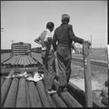 San Joaquin Valley, California. On the Freights. Two youngsters aged fifteen and sixteen traveling in the company of... - NARA - 532077.tif