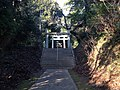Sando and torii of Chikushi Shrine.JPG