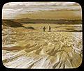 Sastrugi sculptured by the incessant blizzards, Adelie Land (Australasian Antarctic Expedition, 1911-1914) (6173950680).jpg