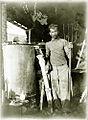 Sault distillateur de lavande sur le plateau d'Albion.jpg