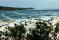 Seaweed Farms in Indonesia.jpg