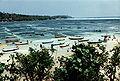 Seaweed Farms in Indonesia.jpg