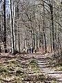 Seen-Tour im Kraichgau-Stromberg - panoramio (1).jpg
