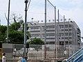 Setagaya Ward Sakura Elementary School.jpg