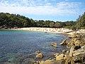 Shelly Beach Manly.JPG