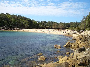 Shelly Beach (Manly) -  Shelly Beach, Manly