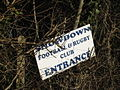 Sign buried in the hedge for the Snowdown football and rugby club - geograph.org.uk - 1133650.jpg