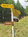 Simplon-Village - Simplon 051 (8436063512).jpg