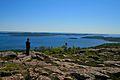 Skuleskogen view Slåttdalsberget 2.jpg