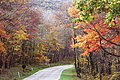 Skyline Drive in Autumn - panoramio.jpg