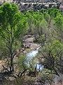 Sonoita Creek Riparian Corridor.jpg