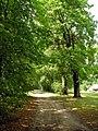 Sontekliu dvarvietes aleja, 2006-08-15.jpg