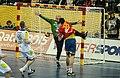 Spain vs Slovenia at 2013 World Handball Championship (19).jpg