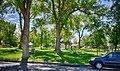 Spruce Park.jpg