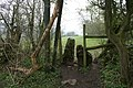 Squeeze Stile near Parwich - geograph.org.uk - 772729.jpg
