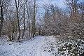 St-Amant-16 Chemin&neige 2009.jpg