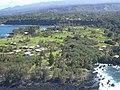 Starr-050307-0089-Livistona chinensis-habitat-Keanae-Maui (24622179322).jpg